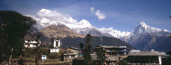 tadapani   trekking in nepal annapurna